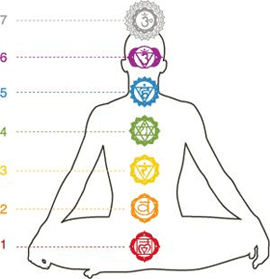 Chakra-System-Explained-Location